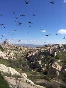Cappadocia. We took this photo. Such a different landscape.